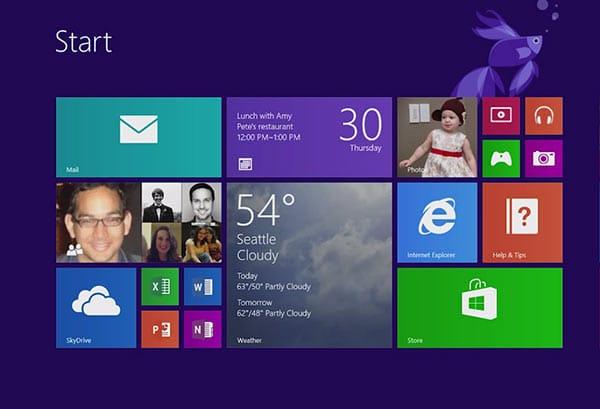 Windows 8.1 d